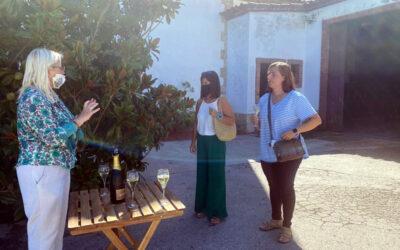 Disfruta con los 5 sentidos de una visita a un viñedo.