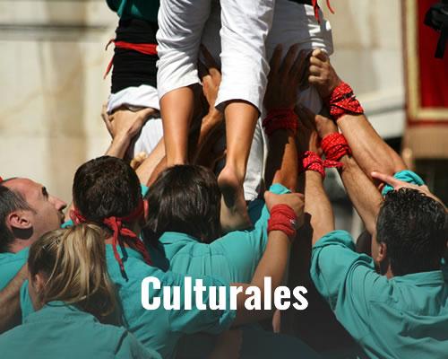 vive experiencias culturales